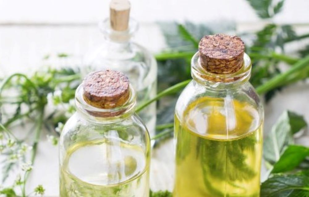 Botanical Extracts - Oil-Soluble