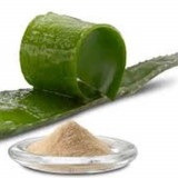 Aloe Vera Spray Dried Powder 200X - 1 pound - $143.00