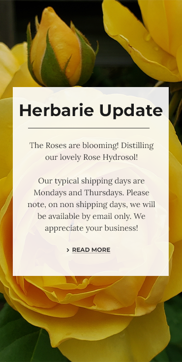 The Herbarie update